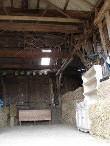 A barn party