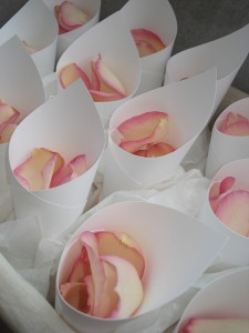 Confetti Cones filled with Freese Dried Rose Petals