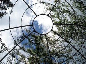 Looking up through an arbour in Alnwick Gardens