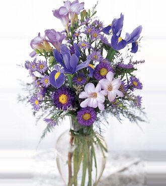 Arrangement of iris & freesia