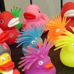 Selection of colourful ducks