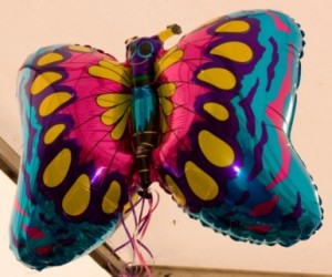 The Colourful Balloon Butterfly